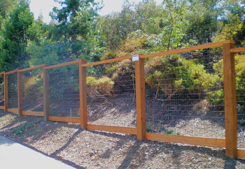 Deer Fencing Construction Portfolio A And J Fencing
